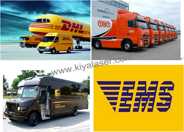Delivery by DHL,UPS,EMS,TNT .jpg